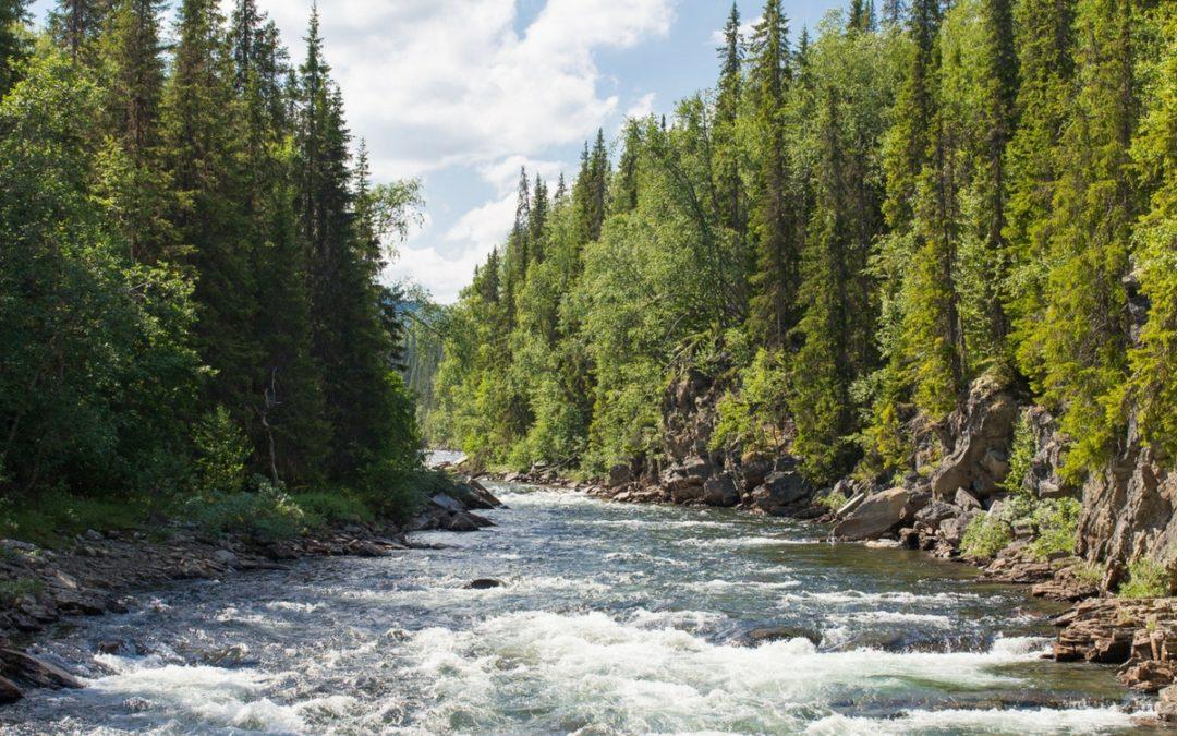 Rivière-du-Loup ou suivre la rivière de mon cœur.